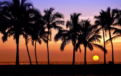 "January ""Tips From Tats"" – Island Style Sunsets"