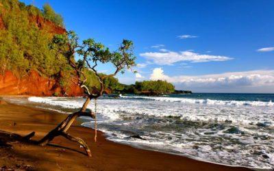 Mo'ōlelo Chapter 5: Maui
