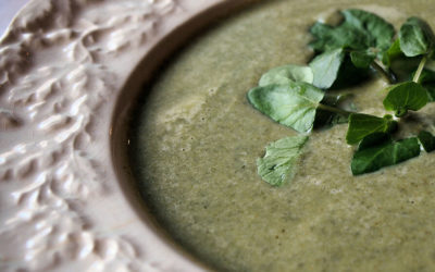 "June ""Tips From Tats"" – Watercress Soup Recipe"